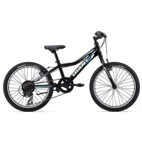 Giant 2014 Revel Junior Lite Boys Bike