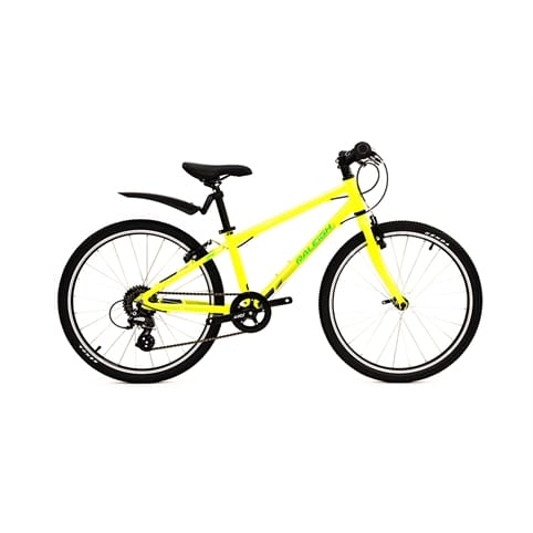 RALEIGH PERFORMANCE 24 KIDS MTB BIKE
