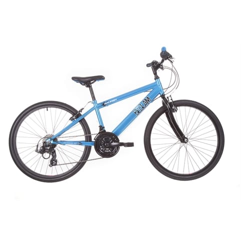 RALEIGH BEDLAM 24 KIDS MTB BIKE