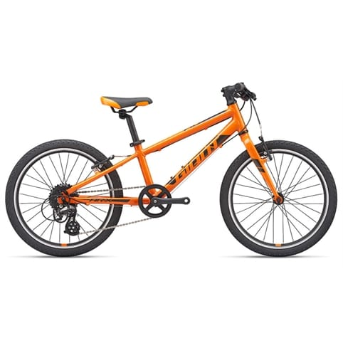 GIANT ARX 20 KIDS BIKE 2020
